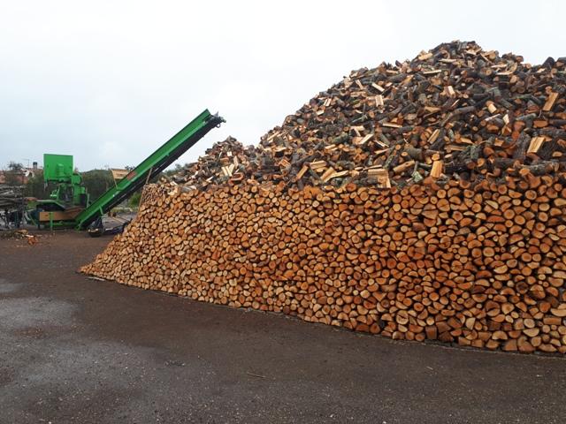 Il valore delle biomasse nella EU: opportunità per imprese agro-industriali. Focus su ENABLING