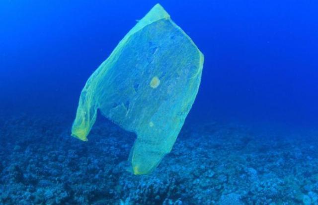 I pescatori, a 19 anni dalla prima proposta Roggiolani, aiuteranno a ripulire il mare