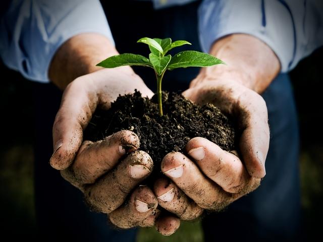 """Bioeconomia: un altro """"green washing"""" o una soluzione realistica? Diretta streaming 15 aprile"""