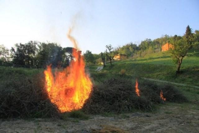 PNIEC, bioenergie e combustione in campo dei residui agricoli: la Conferenza Stato-Regioni pone finalmente una pietra tombale