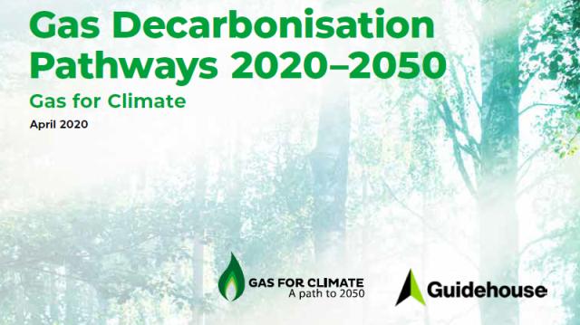 """Pubblicato il nuovo Report """"Gas for climate"""""""