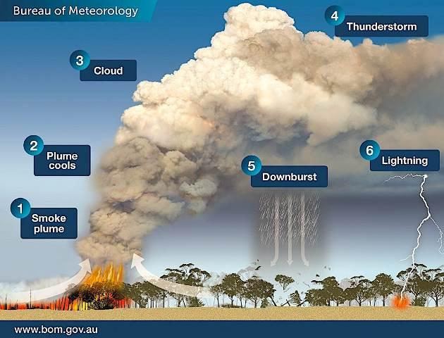 Incendi-temporali-fulminazioni: il triste triangolo vizioso della torrida estate australiana