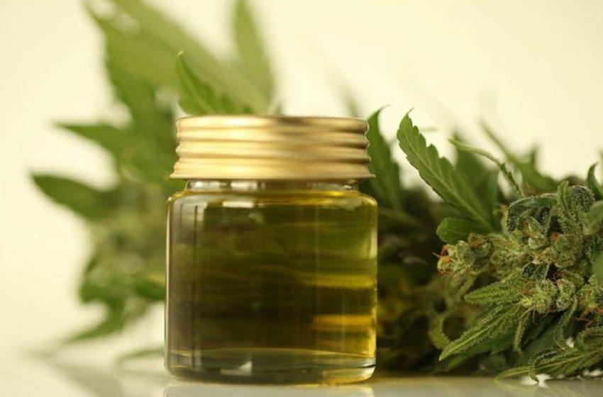 Olio al CBD: ora in Italia è considerato uno stupefacente. A rischio la filiera della cannabis light