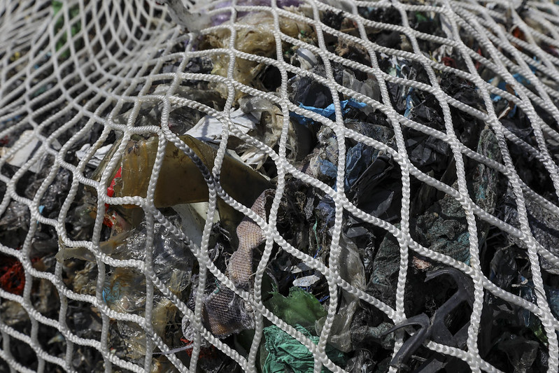 Golfo di Follonica: recuperate tutte le ecoballe