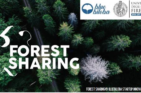 Forest Sharing: una nuova startup per creare una community dei boschi