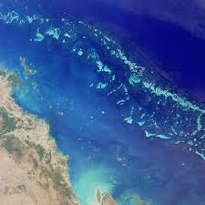 L'Australia crea la rete di parchi marini più grande al mondo