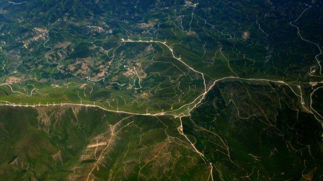 """Le tante sfumature del verde: La Terra è più verde. Giuseppe Barbiero: """"Una notizia storica"""""""