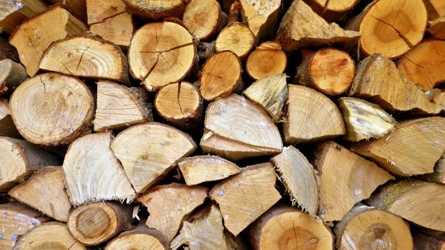 Pellet e legna per riscaldarsi nel rispetto dell'ambiente: i consigli di Luca Mercalli sul sito AIEL