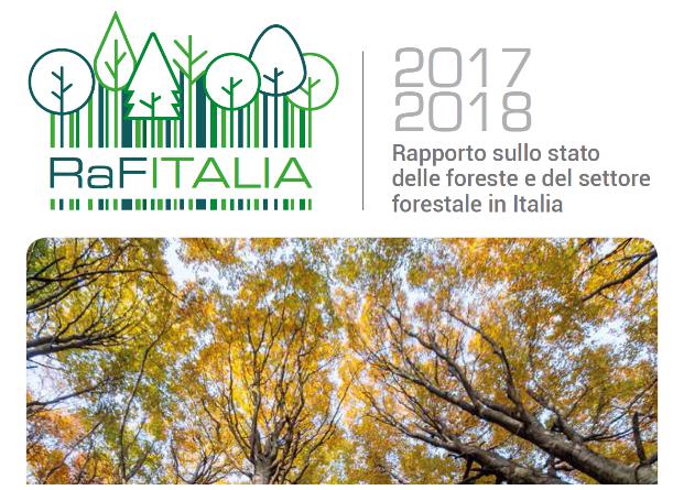 Foreste d'Italia: un terzo del territorio nazionale, con crescita in rallentamento