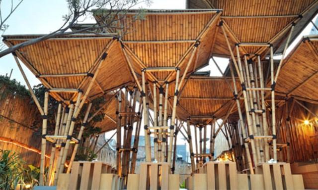 Il mondo del bambù: un futuro possibile e sostenibile