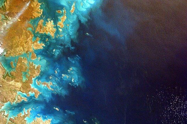 Il Brasile ha perso l'80% delle barriere coralline in 50 anni