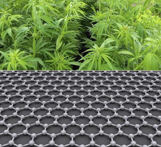 Super-batterie, meglio la marijuana del grafene?