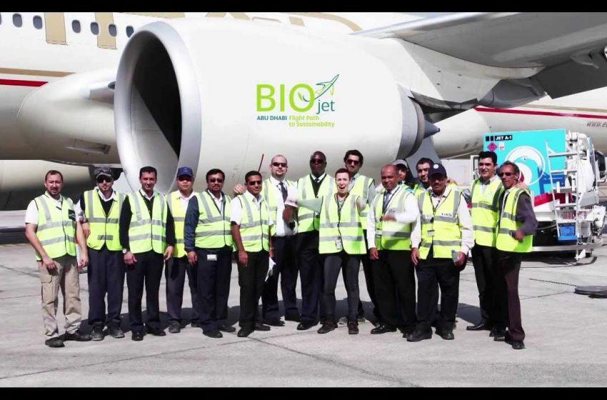 Biocarburante dalle piante del deserto e dall'acqua marina per Boeing e Ethiad Airlines