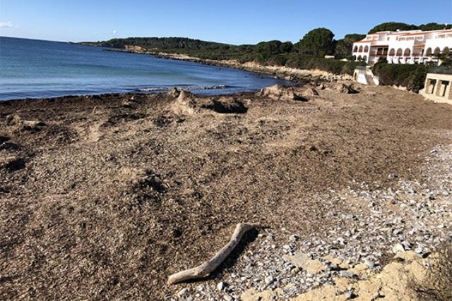 Rifiuti in spiaggia: la soluzione ecosostenibile sarda