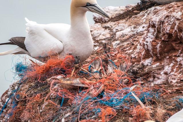 Inquinamento marino: 14 tonnellate di rifiuti pescati in Adriatico con un progetto europeo