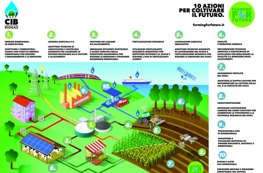 """""""Farming for Future"""": le 10 azioni CIB per  coltivare il futuro"""