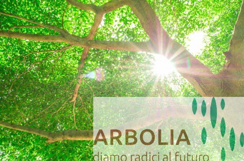 """Ecco """"Arbolia"""": Snam e Cdp insieme per piantare alberi"""