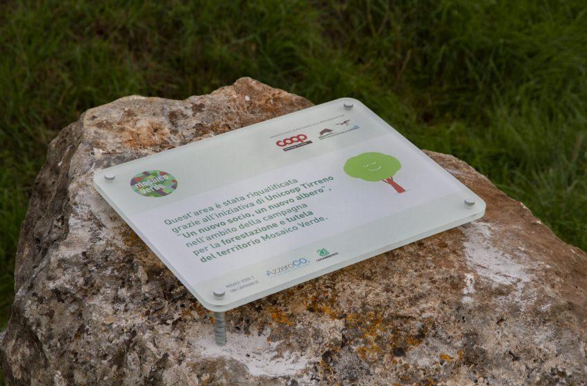 500 nuovi alberi nel Parco della Maremma grazie al sostegno di Unicoop Tirreno