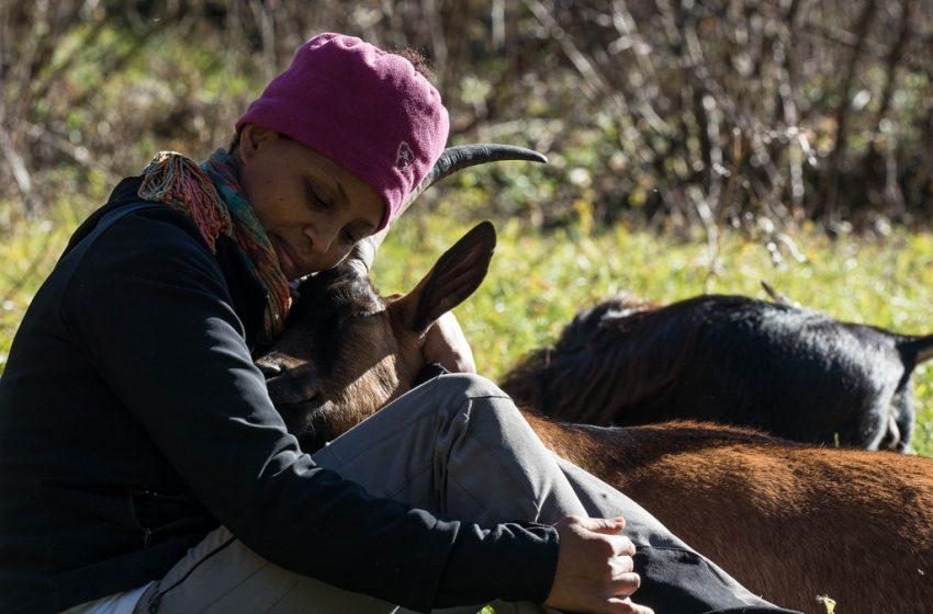 In ricordo di Agitu Ideo Gudeta e delle sue capre felici