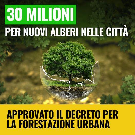 Ministero dell'Ambiente: 30 milioni per piantare alberi nelle città