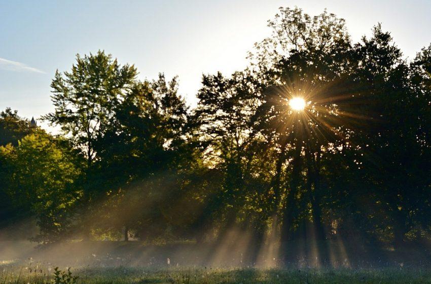 Il ruolo della radiazione solare UV nell'infezione e nei decessi per COVID-19? Uno studio ecologico ambientale in Italia