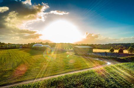Biometano: tutti i vantaggi del biocombustibile a km zero