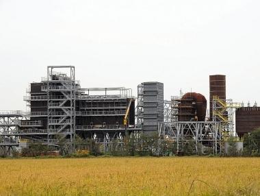 Grandi impianti a biomasse legnose: un danno per le rinnovabili