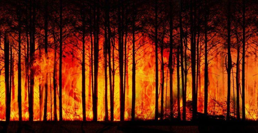 Informazione cieca sul clima: l'analisi di Sergio Ferraris