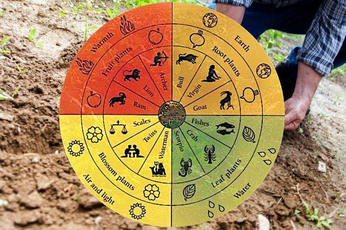 Agricoltura biologica: il Ddl spiegato in 5 punti dopo inesattezze e pratiche stregonesche