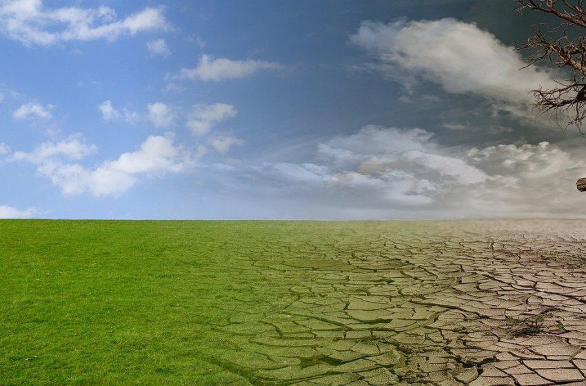 Germania, sentenza storica: la difesa del clima è un diritto fondamentale dei cittadini
