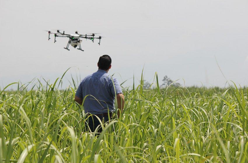 Ridurre i consumi energetici e ottimizzare le risorse con l'agricoltura di precisione