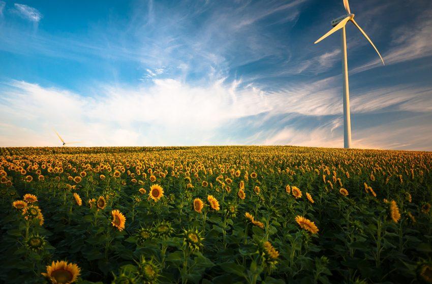 Montanari e le Soprintendenze ci aiutino a costruire il nuovo paesaggio della Transizione Ecologica