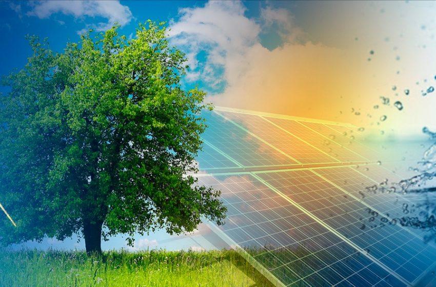 Convegno FREE: Semplificare per Decarbonizzare, Roma 8 Luglio