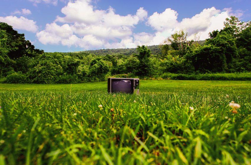 Ecofuturo torna in TV! Da sabato 11 settembre lo speciale sul festival