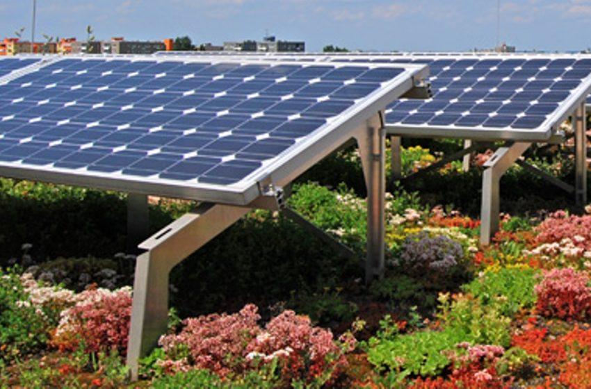 Tetti verdi e fotovoltaico: connubio vincente