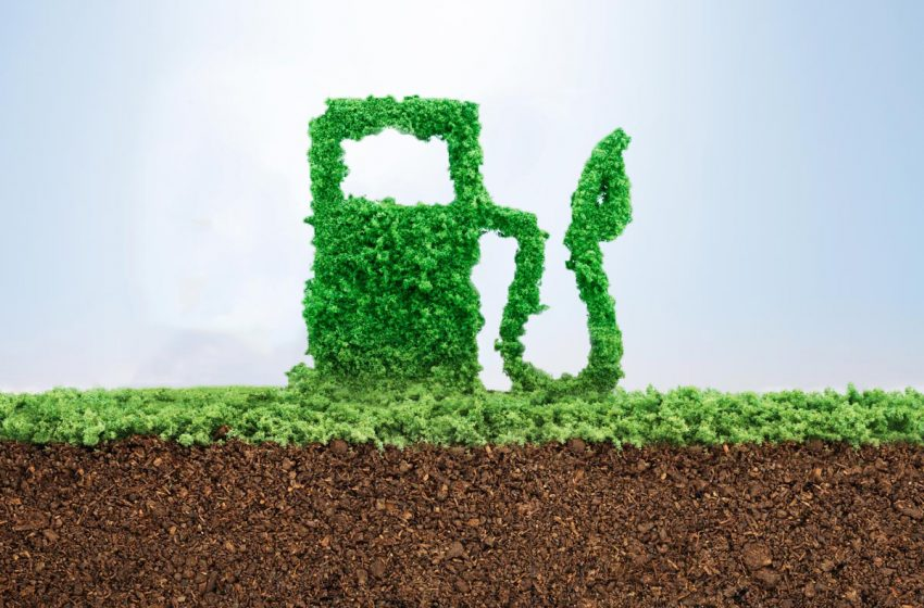 Mobilità a zero emissioni: focus biometano