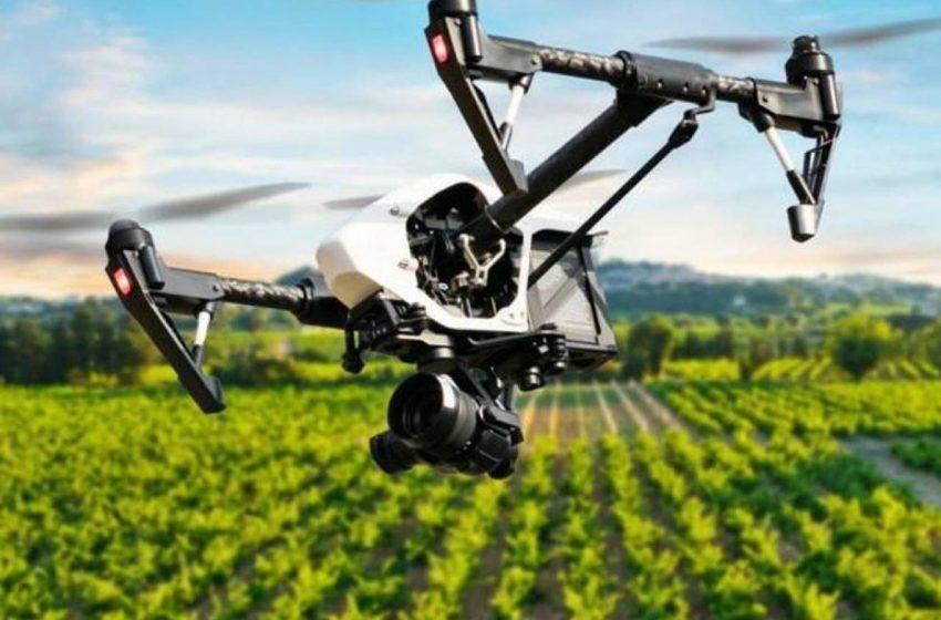 Sostenibilità agroalimentare: i vincitori di Bologna Award